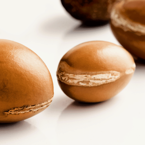 Argan_nuts-04