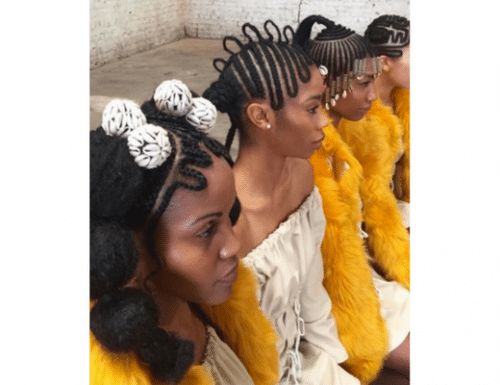 The Modern Braid for Ethnic Hair 2017